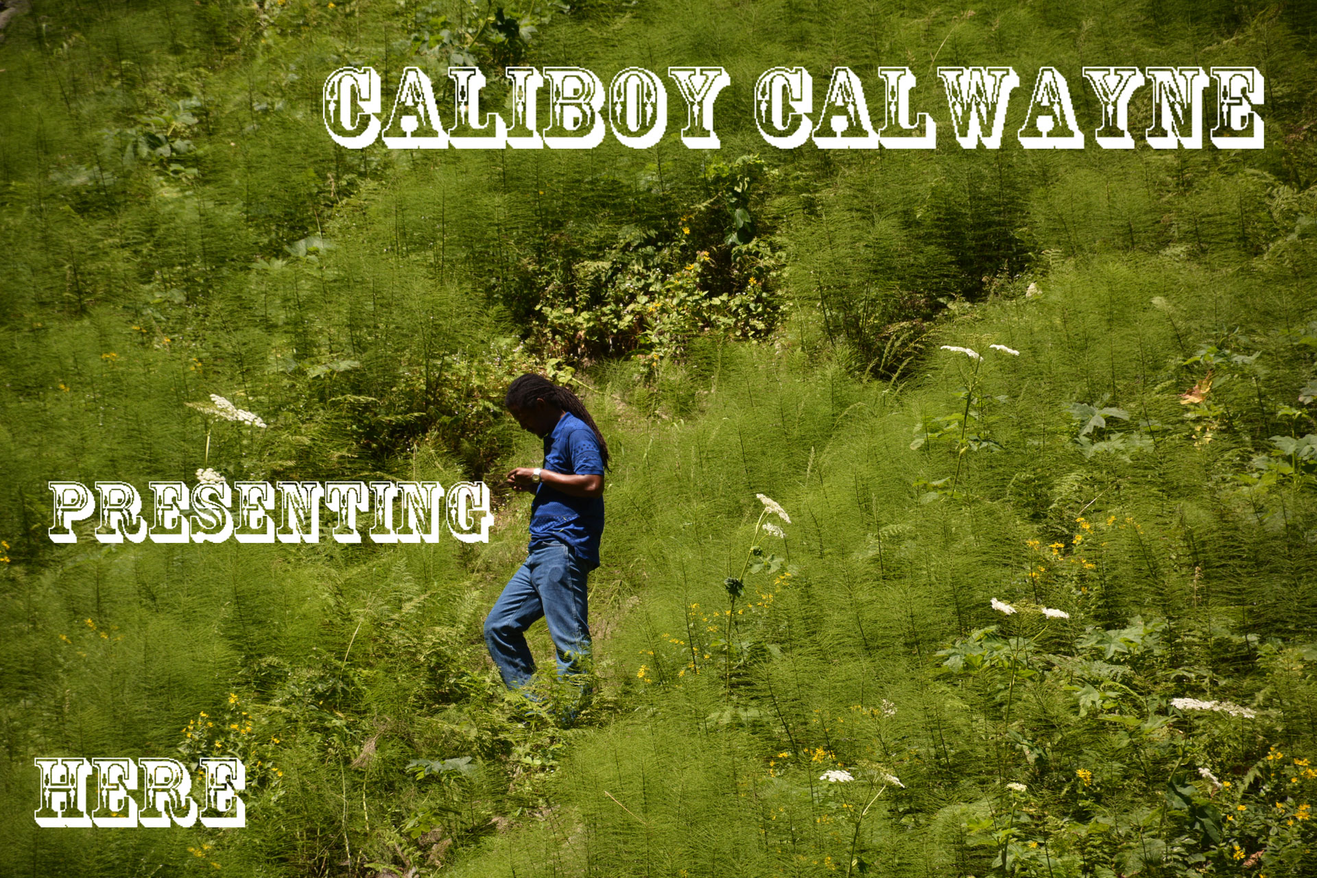 Caliboy in nature